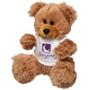 Walter Bear with T-Shirt