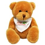 Scout Bears - Cheerful Bear - Bandana - 1 Day