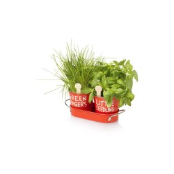 View a larger, more detailed picture of the DISC Jamie Oliver Grow Your Own Herbs