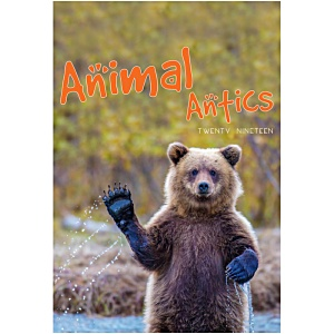 Wall Calendar - Animal Antics Main Image