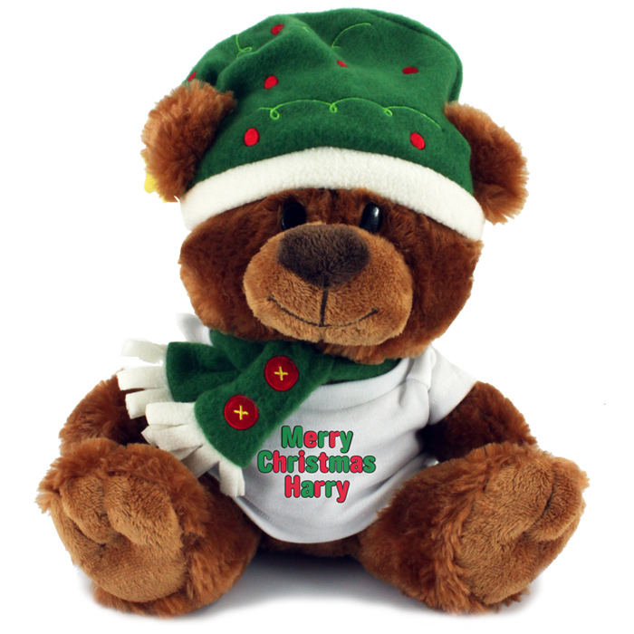 Christmas Bear.Christmas Bear With T Shirt