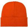 View Extra Image 1 of 3 of Boreas Beanie